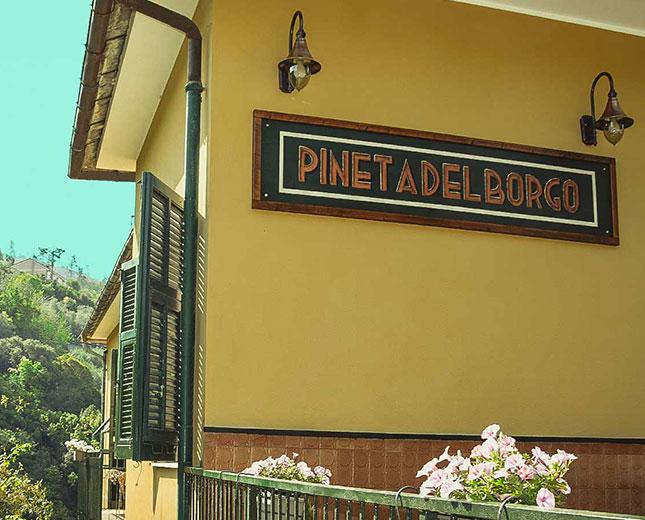 pineta-galleria15
